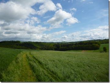 Traumschleife Oberes Baybachtal - freies Feld