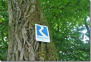 Rheinsteig Sayn - Vallendar - Logo am Baum