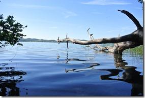 Laacher See: Geopfad L - dunkles Wasser