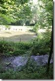 Traumpfad Waldschluchtenweg - Fischteiche