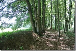 Traumpfad Waldschluchtenweg - Limeswall