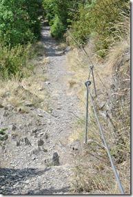 Moselsteig Treis-Karden - Moselkern - Abstieg