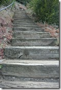 Moselsteig Treis-Karden - Moselkern - Treppen
