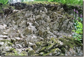 Fürstenweg - Felsstruktur am Wegesrand