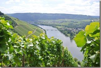 Moselsteig Schweich - Mehring - Mosel & Wein
