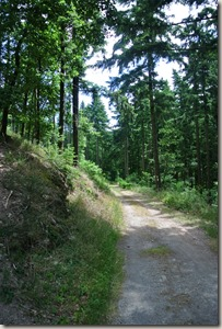 Moselsteig Schweich - Mehring - Waldweg