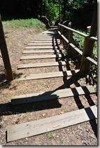 Moselsteig Schweich - Mehring - Himmelstreppe