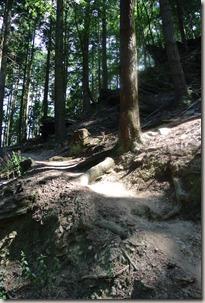 Seitensprung Mehringer Schweiz - Pfad nach oben
