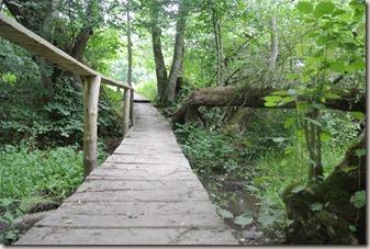 Traumpfad Vier-Berge-Tour - Holzsteg