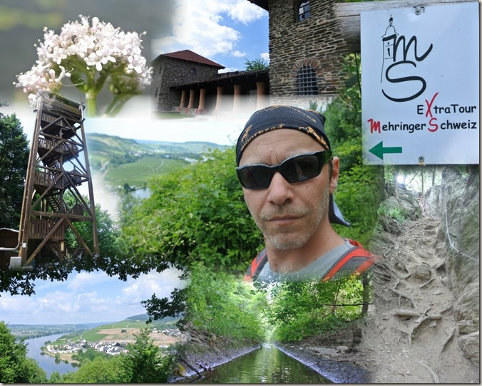 Seitensprung Mehringer Schweiz - Collage