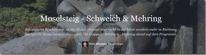 2014-07-13 15_58_07-Moselsteig - Schweich & Mehring (Preview) · p_winninger · Storify