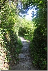 Traumschleife Mittelrhein Klettersteig - Weg zum Einstieg