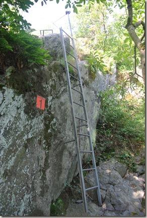 Traumschleife Mittelrhein Klettersteig - die erste Leiter liegt hinter mir