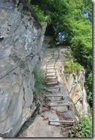 Traumschleife Mittelrhein Klettersteig - Sprossen in der Wand