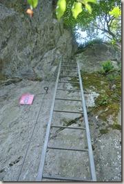 Traumschleife Mittelrhein Klettersteig - und die nächste Leiter steht bevor