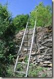 Traumschleife Mittelrhein Klettersteig - Und wieder Leitern