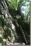 Traumschleife Mittelrhein Klettersteig - der Fels ruft