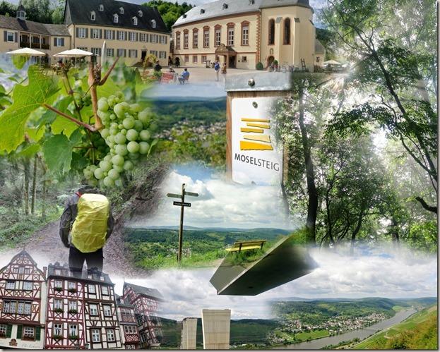 Moselsteig Bernkastel-Kues-Zeltingen - Collage