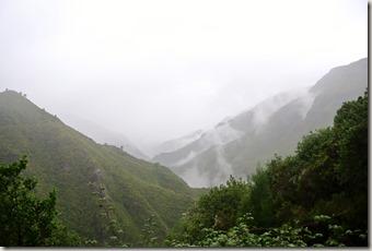 Madeira Wanderung - 25 Quellen - Nebelschwaden