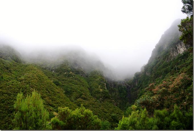 Madeira Wanderung - 25 Quellen - Nebel