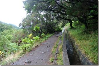 Madeira Wanderung - 25 Quellen - der Levada