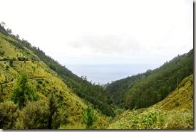 Madeira Wanderung - 25 Quellen - auf der anderen Seite