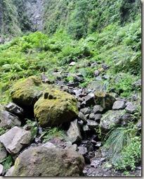 Madeira Wanderung Caldeirao Verde - Kesselboden