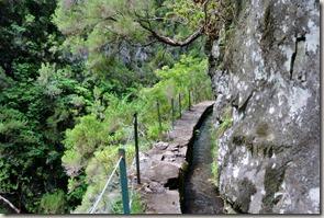 Madeira Wanderung Caldeirao Verde - manchmal Eng
