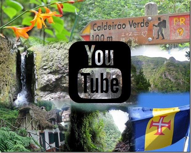 madeira-lorbeerwald Video-teaser