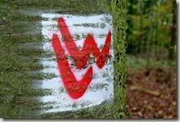 Lahnwanderweg: Etappe Diez-Balduinstein - Logo