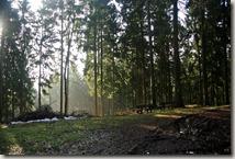 Traumschleife Lücknerweg - Morgenlicht