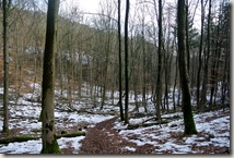 Traumschleife Lücknerweg - Winterwald
