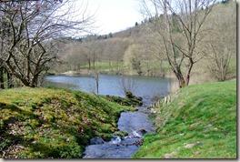 Traumpfad Waldseepfad Rieden - Zufluss