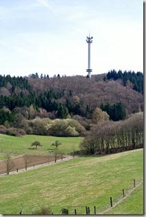 Traumpfad Waldseepfad Rieden - Blick auf den Gänsehals