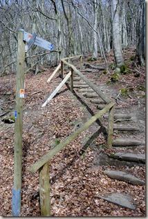 Traumpfad Waldseepfad Rieden - Treppenaufgang