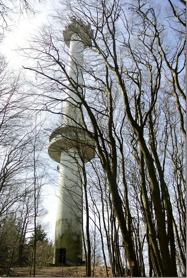 Traumpfad Waldseepfad Rieden - Nochmal der Turm
