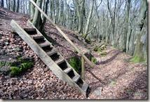Traumpfad Waldseepfad Rieden - Abstieg vom Turm