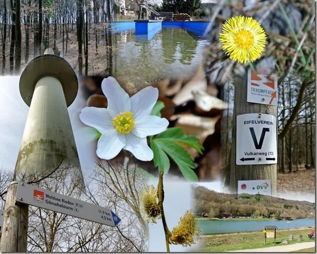 Traumpfad Waldseepfad Rieden - Teasermontage