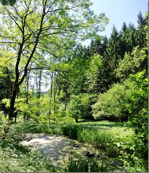 Pulvermühlenweg Sieg - Natüridyll