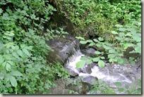 Erlebnisweg Burgweg - Bachlauf