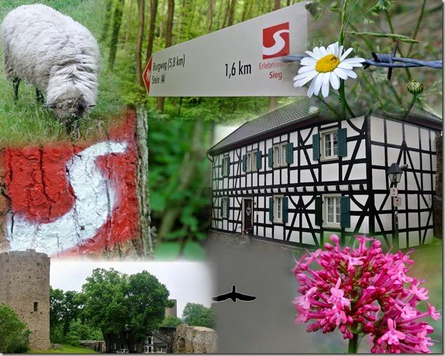 Erlebnisweg Burgweg - Collage