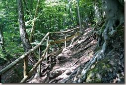 Traumpfad Pellenzer Seepfad - Steiler Anstieg