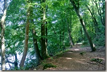 Traumpfad Pellenzer Seepfad - Uferidyll