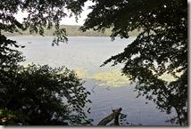 Traumpfad Pellenzer Seepfad - Blick aufs Wasser