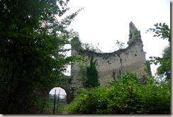 Traumpfad Saynsteig - Blick zur Burg
