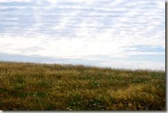 Veldenz Wanderweg Etappe 1 - Wiesen und Wolken