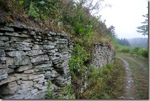 Veldenz Wanderweg Nerzweiler-Ausbacherhof - Trockenmauern im alten Weinberg