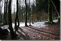 ARhön Kreuzbergtour 2016 - Abstieg ins Tal
