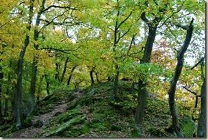 Traumschleife Marienberg - Aussichtspunkt