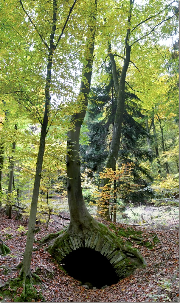 Traumschleife Marienberg - Brunnenstube